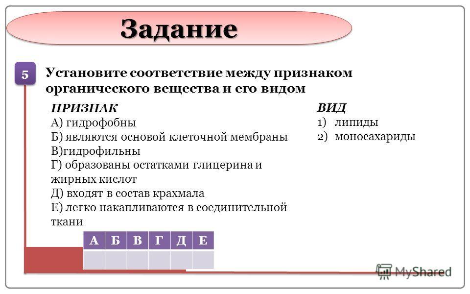 Задание Задание 5 5 Установите соответствие между признаком органического вещества и его видом ПРИЗНАК А) гидрофобный Б) являются основой клеточной мембраны В)гидрофильный Г) образованы остатками глицерина и жирных кислот Д) входят в состав крахмала