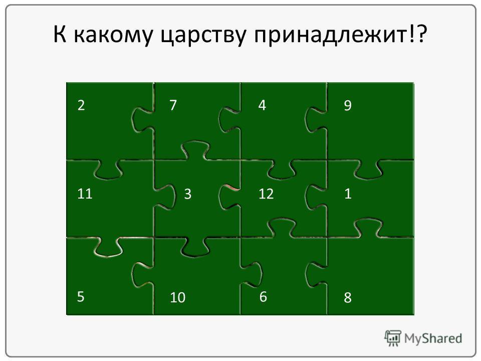 12 8 7 6 5 4 3 2 1 10 9 11