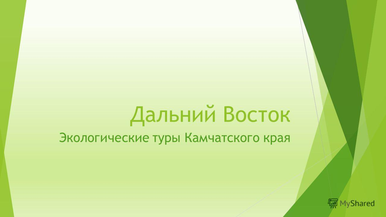 Дальний Восток Экологические туры Камчатского края