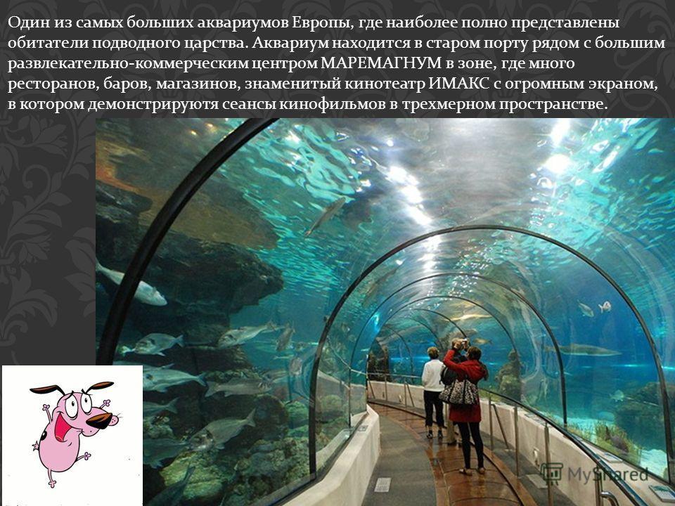 Один из самых больших аквариумов Европы, где наиболее полно представлены обитатели подводного царства. Аквариум находится в старом порту рядом с большим развлекательно - коммерческим центром МАРЕМАГНУМ в зоне, где много ресторанов, баров, магазинов,