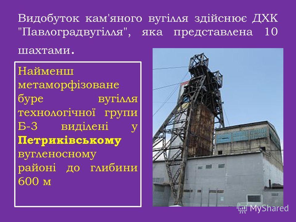 Видобуток кам'яного вугілля здійснює ДХК Павлоградвугілля, яка представлена 10 шахтами. Найменш метаморфізоване буре вугілля технологічної групи Б-3 виділені у Петриківсикому вугленосному районі до глубины 600 м