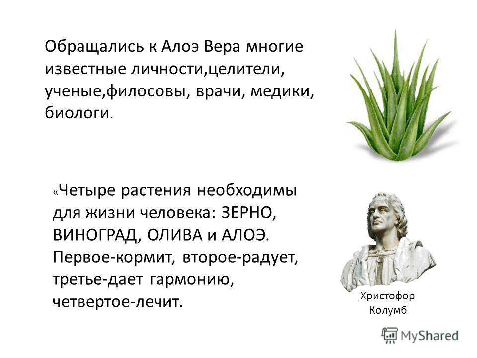 Христофор Колумб Обращались к Алоэ Вера многие известные личности,целители, ученые,философы, врачи, медики, биологи. « Четыре растения необходимы для жизни человека: ЗЕРНО, ВИНОГРАД, ОЛИВА и АЛОЭ. Первое-кормит, второе-радует, третье-дает гармонию, ч