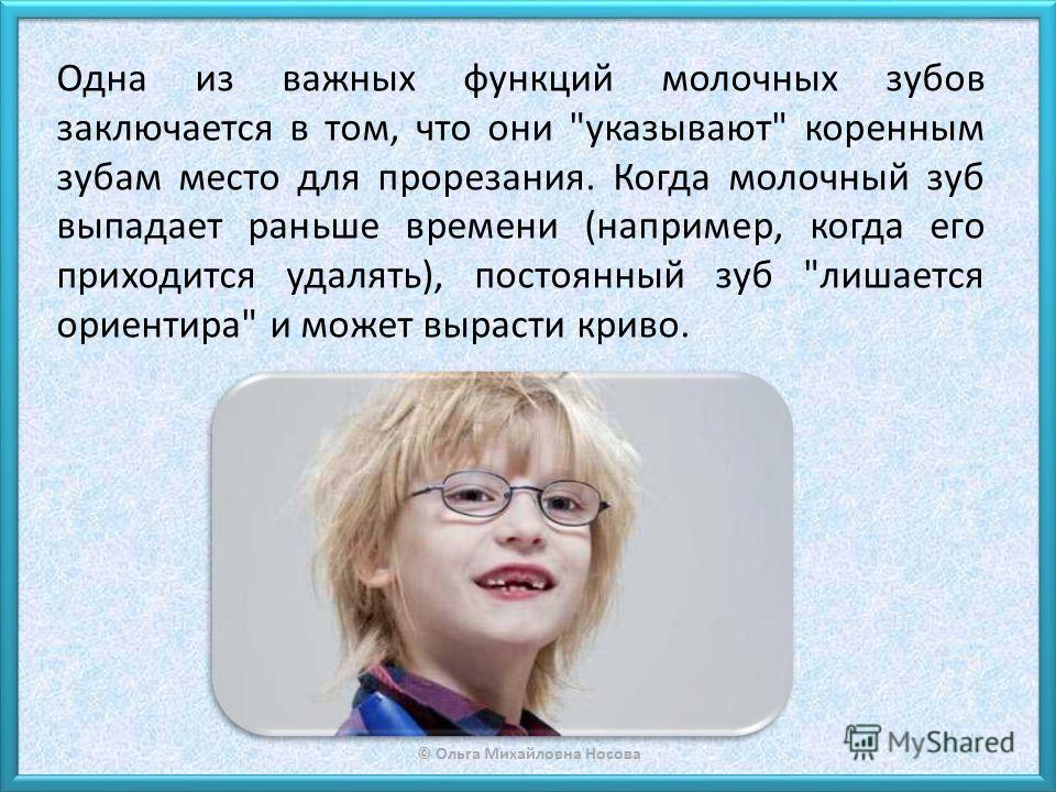 © Ольга Михайловна Носова Одна из важных функций молочных зубов заключается в том, что они