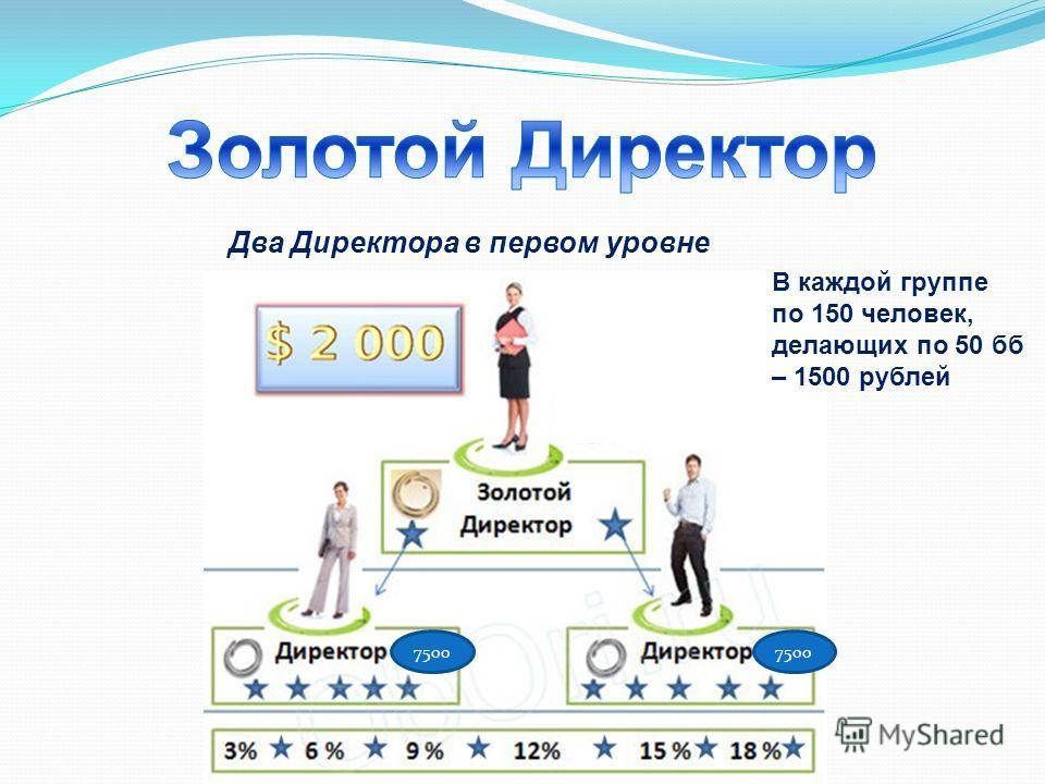 Два Директора в первом уровне 7500 В каждой группе по 150 человек, делающих по 50 б – 1500 рублей