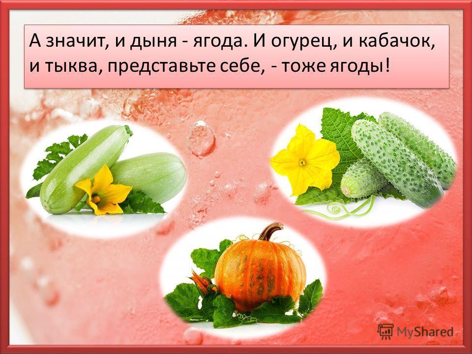 А значит, и дыня - ягода. И огурец, и кабачок, и тыква, представьте себе, - тоже ягоды!