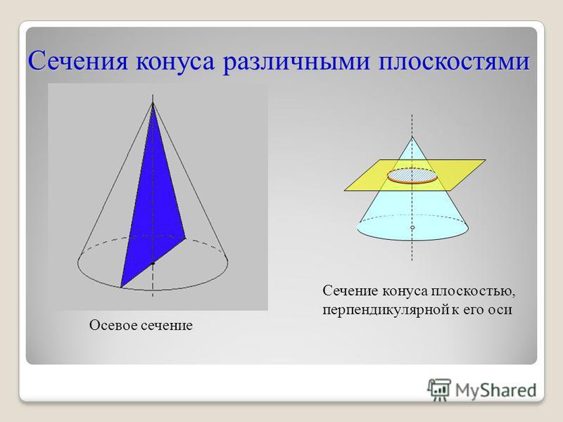 Сечения конуса различными плоскостями Осевое сечение Сечение конуса плоскостью, перпендикулярной к его оси
