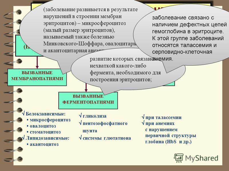ГЕМОЛИТИЧЕСКИЕ АНЕМИИ ПЕРВИЧНЫЕ (НАСЛЕДСТВЕННЫЕ, ВРОЖДЕННЫЕ) ВТОРИЧНЫЕ (ПРИОБРЕТЕННЫЕ) ВЫЗВАННЫЕ МЕМБРАНОПАТИЯМИ ВЫЗВАННЫЕ ГЕМОГЛОБИНОПАТИЯМИ ВЫЗВАННЫЕ ФЕРМЕНТОПАТИЯМИ гликолиза пентозофосфатного шунта системы глютатиона при талассемии при анемиях с