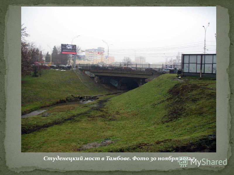 Студенецкий мост в Тамбове. Фото 30 ноября 2012 г.