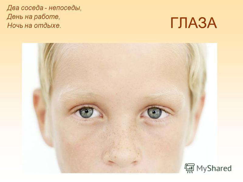 Детская Электронная Книга (ДЭК)