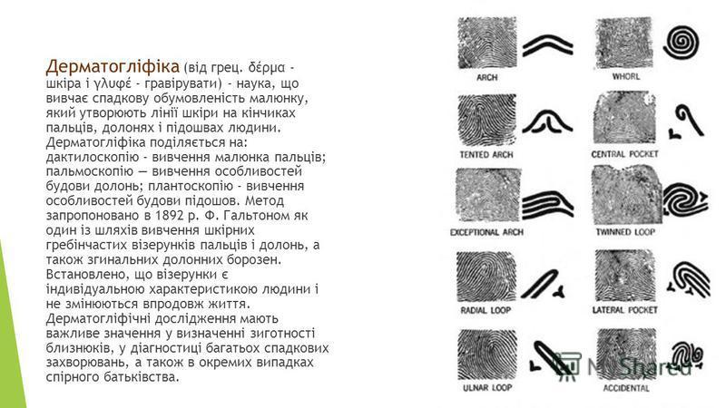 Дерматогліфіка (від грец. δέρμα - шкіра і γλυφέ - гравірувати) - наука, що вивчає сладкову обумовленість малюнку, який утворюють лінії шкіри на кінчиках пальців, долонях і підошвах людини. Дерматогліфіка поділяється на: дактилоскопію - вивчення малин