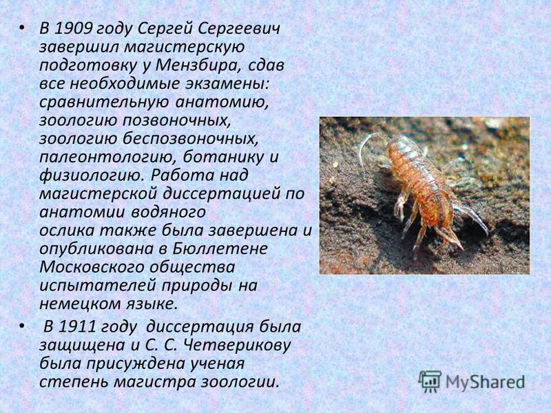 В 1909 году Сергей Сергеевич завершил магистерскую подготовку у Мензбира, сдав все необходимые экзамены: сравнительную анатомию, зоологию позвоночных, зоологию беспозвоночных, палеонтологию, ботанику и физиологию. Работа над магистерской диссертацией