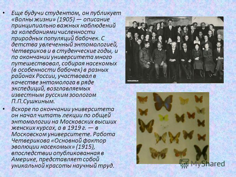 Еще будучи студентом, он публикует «Волны жизни» (1905) описание принципиально важных наблюдений за колебаниями численности природных популяций бабочек. С детства увлеченный энтомологией, Четвериков и в студенческие годы, и по окончании университета