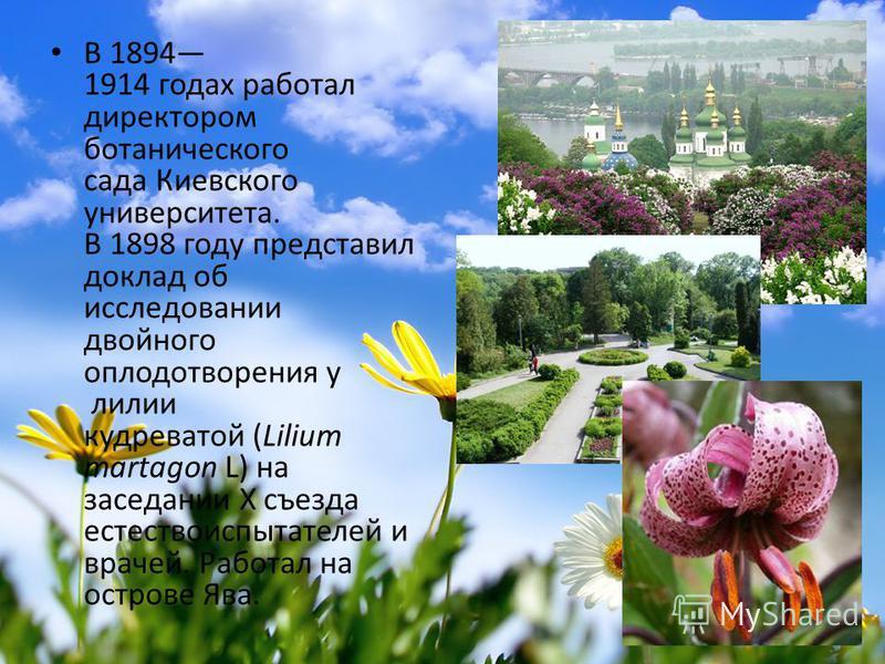 В 1894 1914 годах работал директором ботанического сада Киевского университета. В 1898 году представил доклад об исследовании двойного оплодотворения у лилии кудреватой (Lilium martagon L) на заседании Х съезда естествоиспытателей и врачей. Работал н