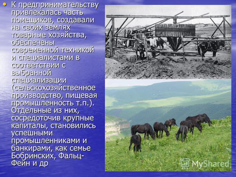 К предпринимательству привлекалась часть помещиков, создавали на своих землях товарные хозяйства, обеспечены современной техникой и специалистами в соответствии с выбранной специализации (сельскохозяйственное производство, пищевая промышленность т.п.