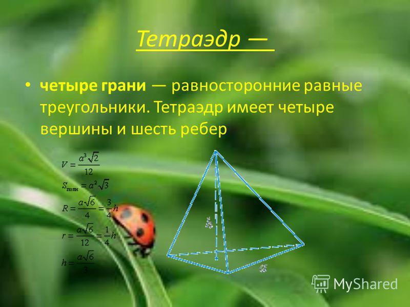 Тетраэдр четыре грани равносторонние равные треугольники. Тетраэдр имеет четыре вершины и шесть ребер