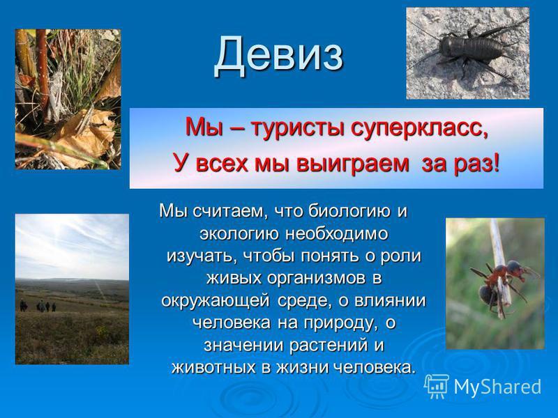 девиз про природу для детей избранное