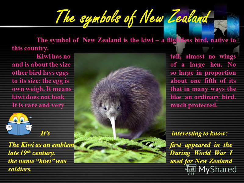 The symbols of New Zealand The symbol of New Zealand is the kiwi – a flightless bird, native to this country. Kiwi has no tail, almost no wings and is about the size of a large hen. No other bird lays eggs so large in proportion to its size: the egg