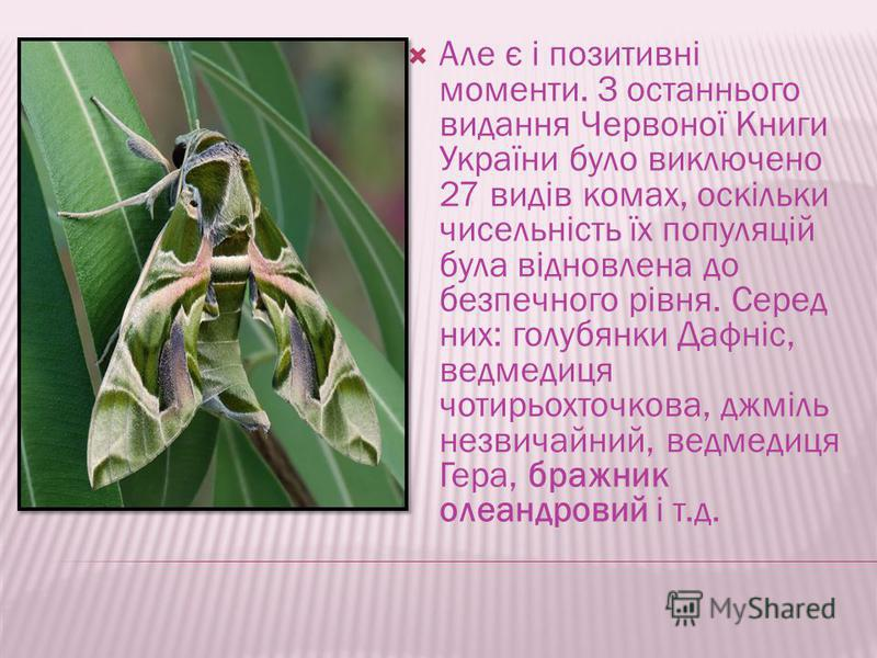 Але є і позитивні моменти. З останнього видання Червоної Книги України было виключено 27 видів комах, оскільки чисельність їх популяцій була відновлена до беспечного рівня. Серед них: голубянки Дафніс, ведмедиця чотирьохточкова, джміль незвичайний, в