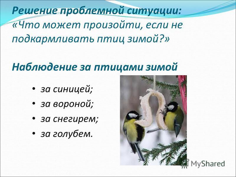Решение проблемной ситуации: «Что может произойти, если не подкармливать птиц зимой?» Наблюдение за птицами зимой за синицей; за вороной; за снегирем; за голубем.