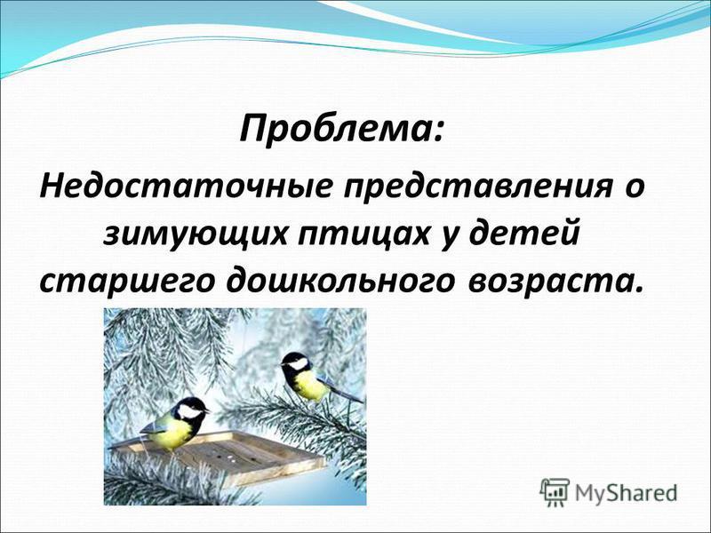 Проблема: Недостаточные представления о зимующих птицах у детей старшего дошкольного возраста.