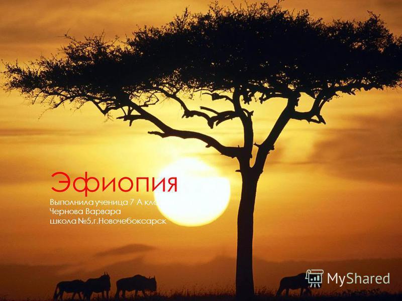 Эфиопия Выполнила ученица 7 А класса Чернова Варвара школа 5,г.Новочебоксарск