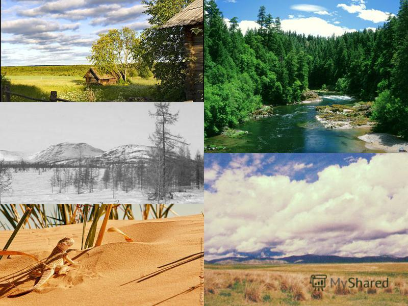 Our country is beautiful. There is hardly a country in the world where such a variety ofnatur scenery and vegetation can be found. We have steppes in the south, plains and forests in the midland, tundra and taiga in the north, highlands and deserts i