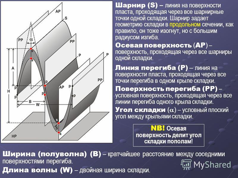 Шарнир (S) – линия на поверхности пласта, проходящая через все шарнирные точки одной складки. Шарнир задает геометрию складки в продольном сечении, как правило, он тоже изогнут, но с большим радиусом изгиба. Осевая поверхность ( AP ) – поверхность, п