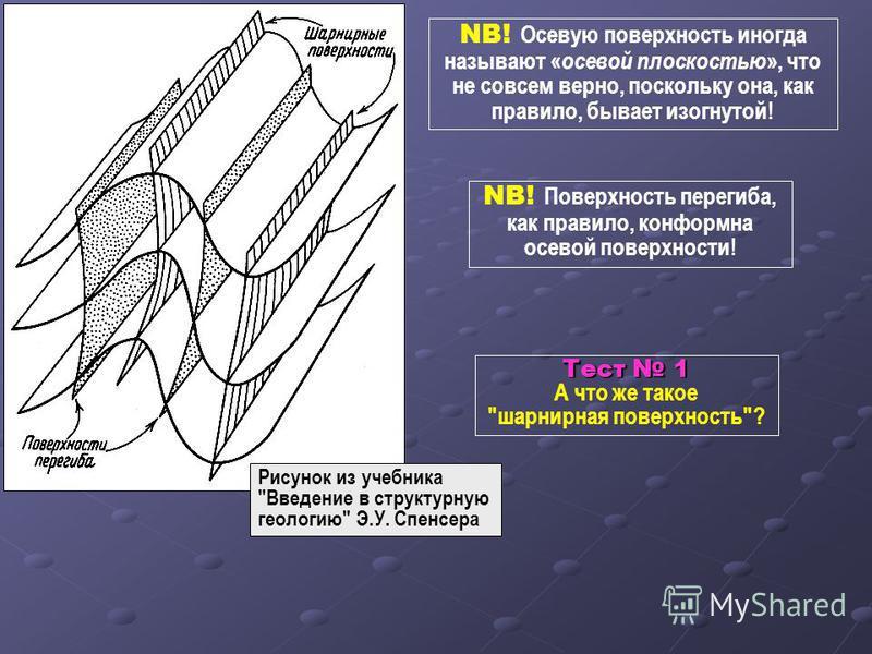 NB! Осевую поверхность иногда называют « осевой плоскостью », что не совсем верно, поскольку она, как правило, бывает изогнутой! Рисунок из учебника