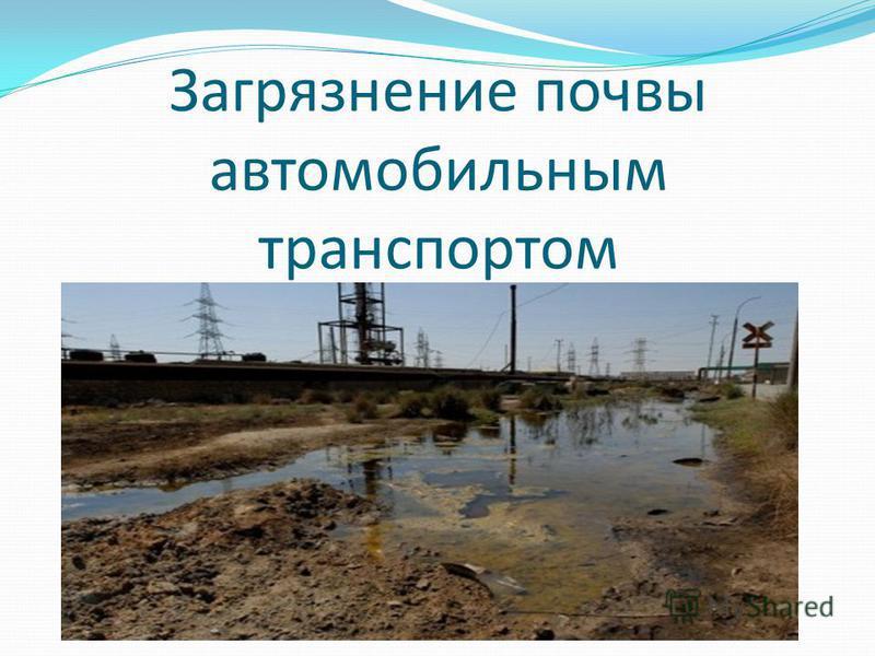 Загрязнение почвы автомобильным транспортом