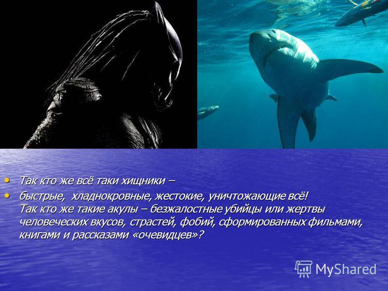 Так кто же всё таки хищники – Так кто же всё таки хищники – быстрые, хладнокровные, жестокие, уничтожающие всё! Так кто же такие акулы – безжалостные убийцы или жертвы человеческих вкусов, страстей, фобий, сформированных фильмами, книгами и рассказам