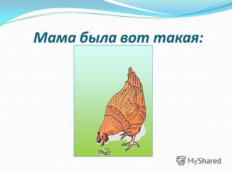 Мама была вот такая: