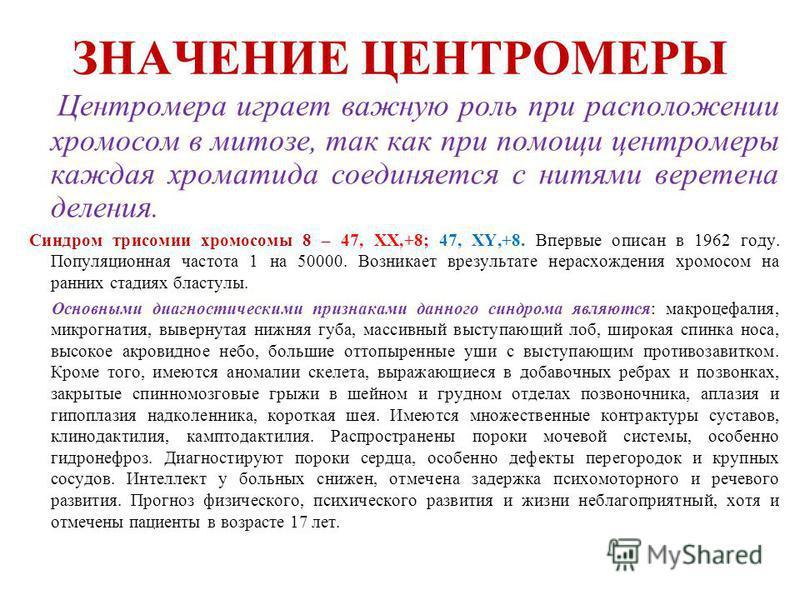 ЗНАЧЕНИЕ ЦЕНТРОМЕРЫ Центромера играет важную роль при расположении хромосом в митозе, так как при помощи центромеры каждая хроматида соединяется с нитями веретена деления. Синдром трисомии хромосомы 8 – 47, ХХ,+8; 47, ХY,+8. Впервые описан в 1962 год