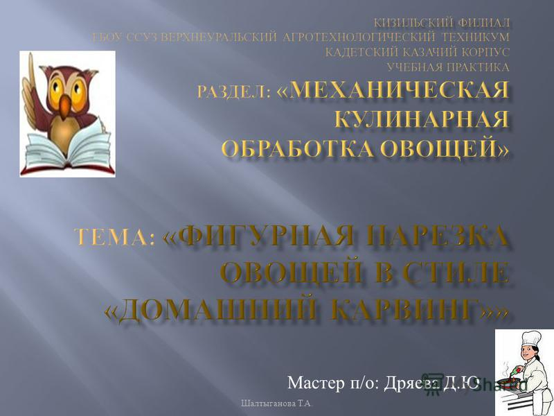 Мастер п / о : Дряева Д. Ю. Шалтыганова Т. А.