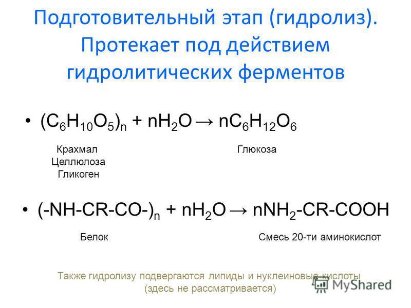 Подготовительный этап (гидролиз). Протекает под действием гидролитических ферментов (С 6 H 10 O 5 ) n + nH 2 O nC 6 H 12 O 6 Крахмал Целлюлоза Гликоген Глюкоза (-NH-CR-CO-) n + nH 2 O nNH 2 -CR-COOH Белок Смесь 20-ти аминокислот Также гидролизу подве