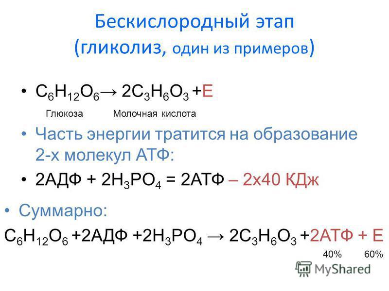 Бескислородный этап (гликолиз, один из примеров ) C 6 H 12 O 6 2С 3 H 6 O 3 +E Глюкоза Молочная кислота Суммарно: C 6 H 12 O 6 +2АДФ +2H 3 PO 4 2С 3 H 6 O 3 +2АТФ + Е Часть энергии тратится на образование 2-х молекул АТФ: 2АДФ + 2H 3 PO 4 = 2АТФ – 2