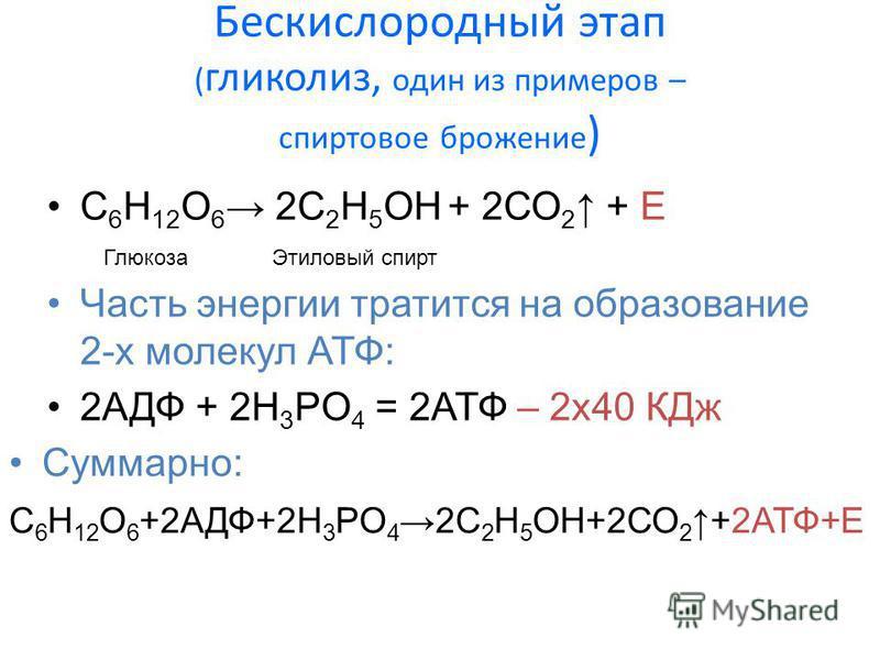 Бескислородный этап ( гликолиз, один из примеров – спиртовое брожение ) C 6 H 12 O 6 2С 2 H 5 OН + 2СО 2 + E Глюкоза Этиловый спирт Суммарно: C 6 H 12 O 6 +2АДФ+2H 3 PO 4 2С 2 H 5 OН+2СО 2 +2АТФ+Е Часть энергии тратится на образование 2-х молекул АТФ