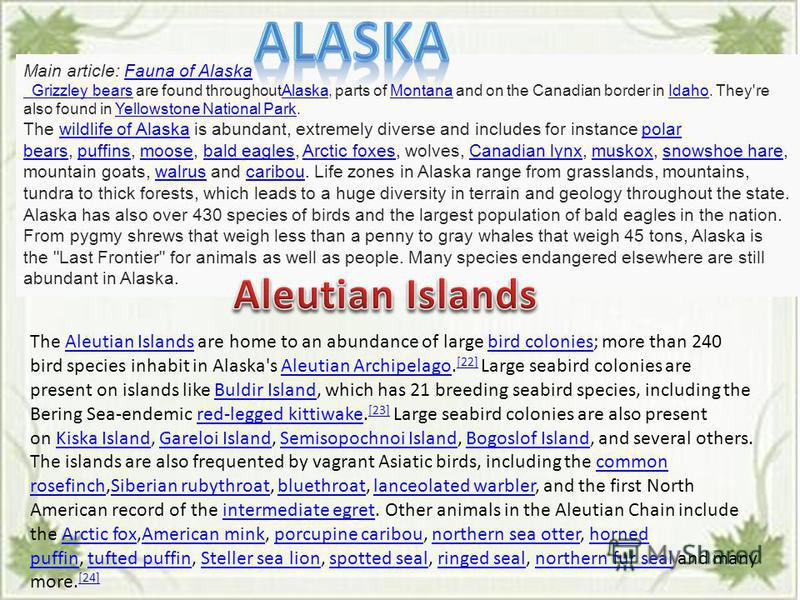Main article: Fauna of AlaskaFauna of Alaska Grizzley bears Grizzley bears are found throughoutAlaska, parts of Montana and on the Canadian border in Idaho. They're also found in Yellowstone National Park.AlaskaMontanaIdahoYellowstone National Park T