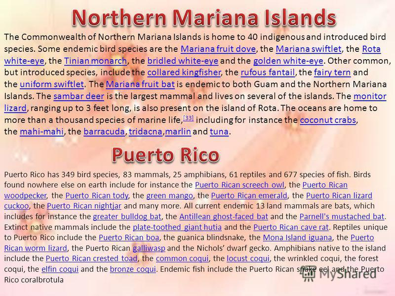 The Commonwealth of Northern Mariana Islands is home to 40 indigenous and introduced bird species. Some endemic bird species are the Mariana fruit dove, the Mariana swiftlet, the Rota white-eye, the Tinian monarch, the bridled white-eye and the golde