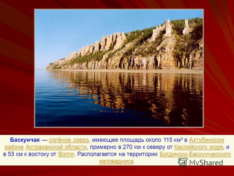 Баскунчак солёное озеро, имеющее площадь около 115 км² в Ахтубинском районе Астраханской области, примерно в 270 км к северу от Каспийского моря, и в 53 км к востоку от Волги. Располагается на территории Богдинско-Баскунчакского заповедника.солёное о