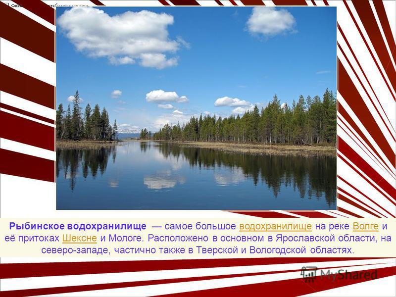 Рыбинское водохранилище самое большое водохранилище на реке Волге и её притоках Шексне и Мологе. Расположено в основном в Ярославской области, на северо-западе, частично также в Тверской и Вологодской областях.водохранилище ВолгеШексне
