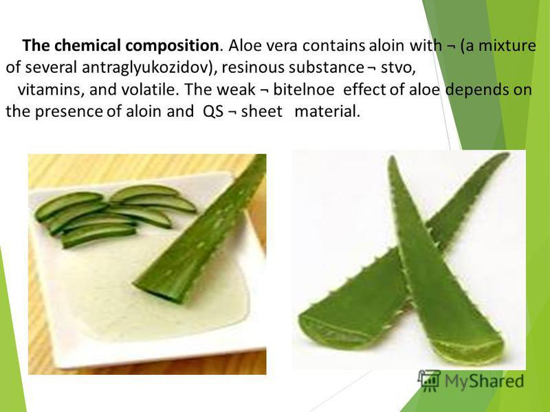 The chemical composition. Aloe vera contains aloin with ¬ (a mixture of several antraglyukozidov), resinous substance ¬ stvo, vitamins, and volatile. The weak ¬ bitelnoe effect of aloe depends on the presence of aloin and QS ¬ sheet material.