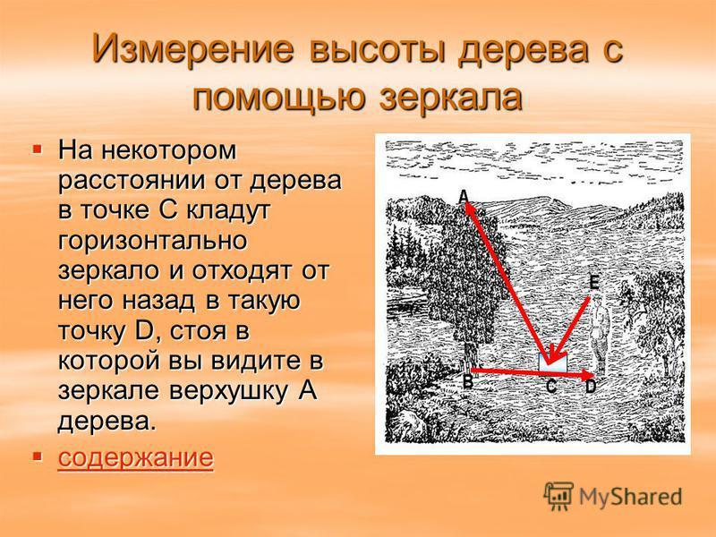 Измерение высоты дерева с помощью зеркала На некотором расстоянии от дерева в точке С кладут горизонтально зеркало и отходят от него назад в такую точку D, стоя в которой вы видите в зеркале верхушку А дерева. На некотором расстоянии от дерева в точк