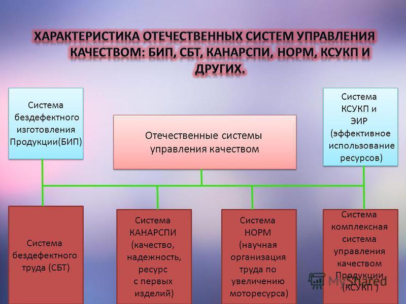Отечественные системы управления качеством Отечественные системы управления качеством Система бездефектного изготовления Продукции(БИП) Система бездефектного изготовления Продукции(БИП) Система бездефектного труда (СБТ) Система КАНАРСПИ (качество, на