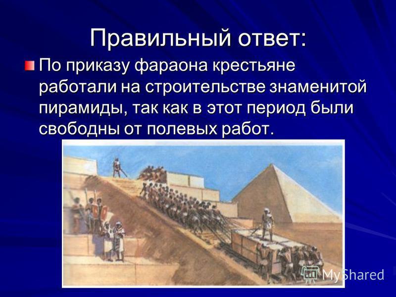Правильный ответ: По приказу фараона крестьяне работали на строительстве знаменитой пирамиды, так как в этот период были свободны от полевых работ.