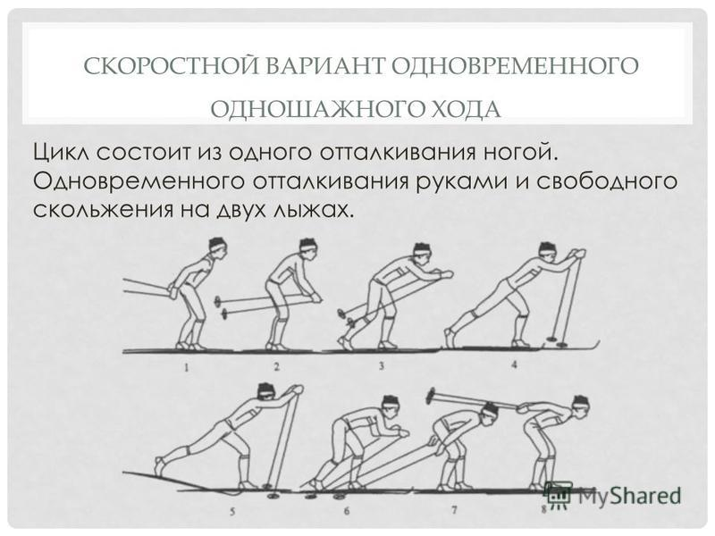 СКОРОСТНОЙ ВАРИАНТ ОДНОВРЕМЕННОГО ОДНОШАЖНОГО ХОДА Цикл состоит из одного отталкивания ногой. Одновременного отталкивания руками и свободного скольжения на двух лыжах.