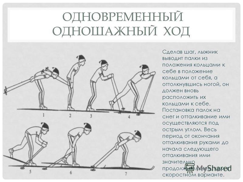 ОДНОВРЕМЕННЫЙ ОДНОШАЖНЫЙ ХОД Сделав шаг, лыжник выводит палки из положения кольцами к себе в положение кольцами от себя, а оттолкнувшись ногой, он должен вновь расположить их кольцами к себе. Постановка палок на снег и отталкивание ими осуществляются
