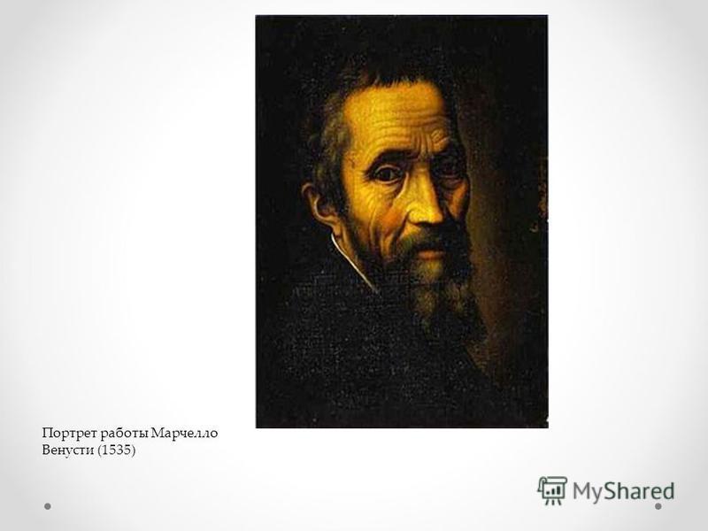 Портрет работы Марчелло Венусти (1535)