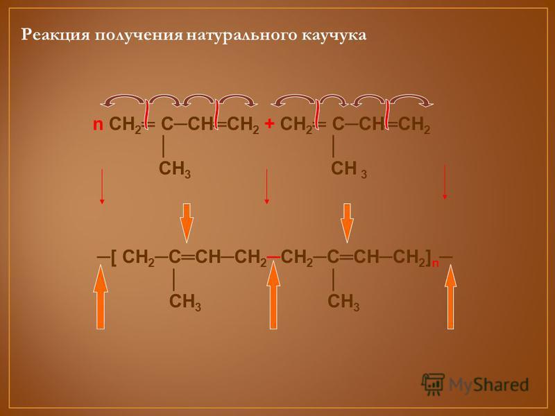 Реакция получения натурального каучука n СН 2 ССНСН 2 + СН 2 ССНСН 2 СН 3 СН 3 [ СН 2 ССНСН 2СН 2 ССНСН 2 ] n СН 3 СН 3