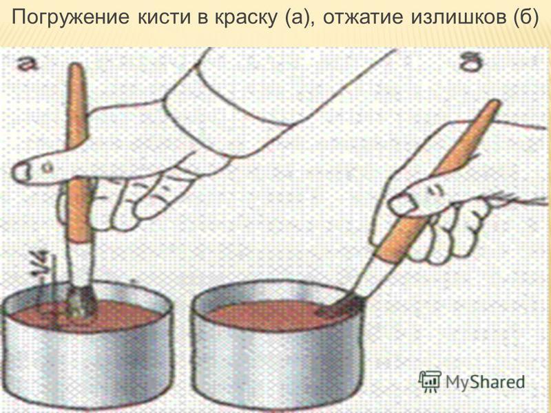 Погружение кисти в краску (а), отжатие излишков (б)