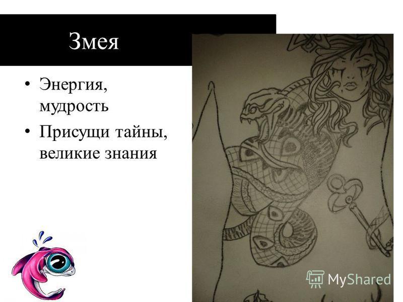 Змея Энергия, мудрость Присущи тайны, великие знания
